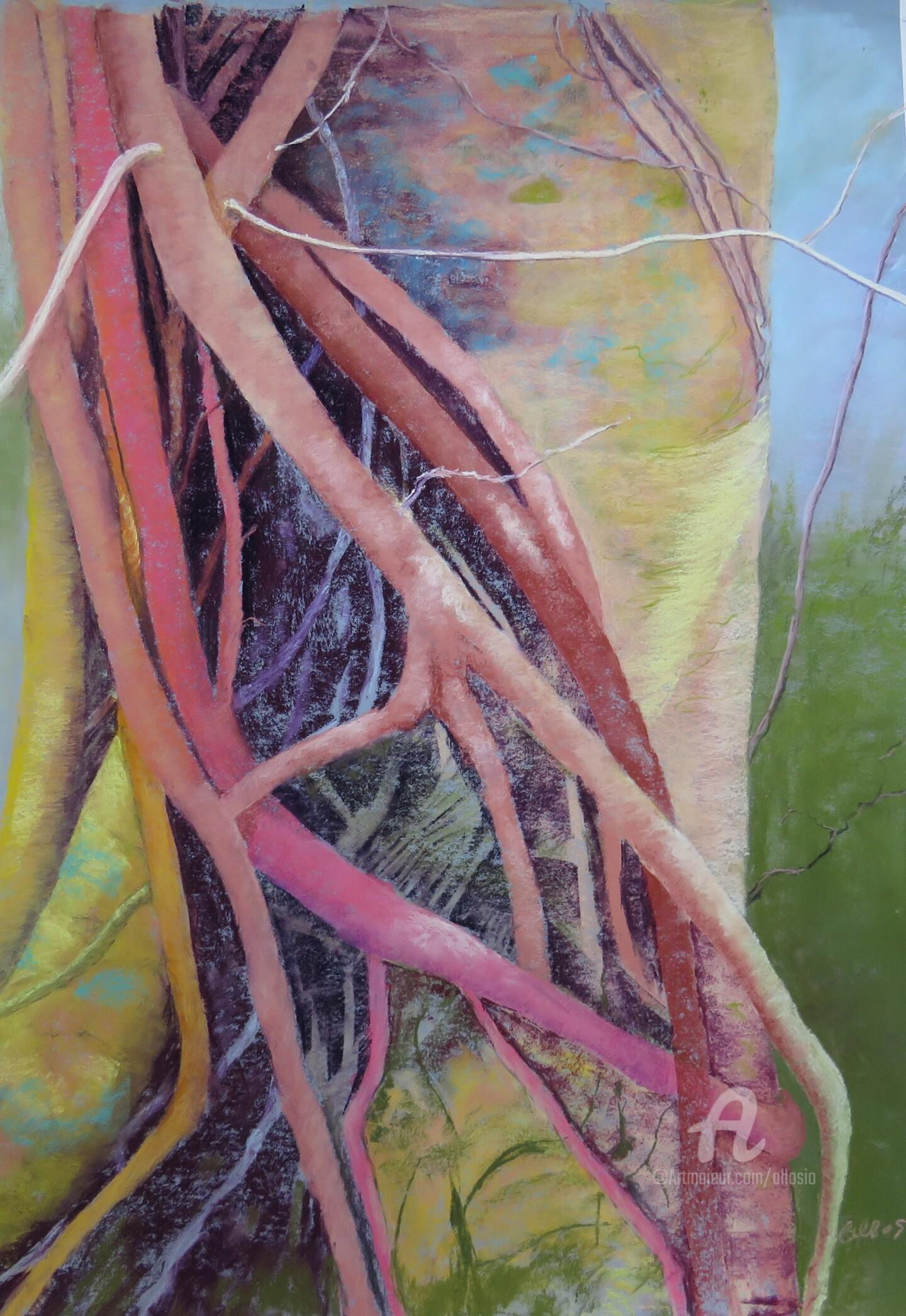 Claudette Allosio - Mon arbre connecté