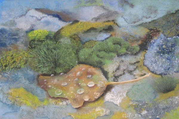 Claudette Allosio - tapis de mousses