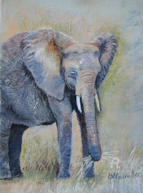 Claudette Allosio - Elephant de Tanzanie