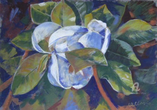 Claudette Allosio - Magnolia