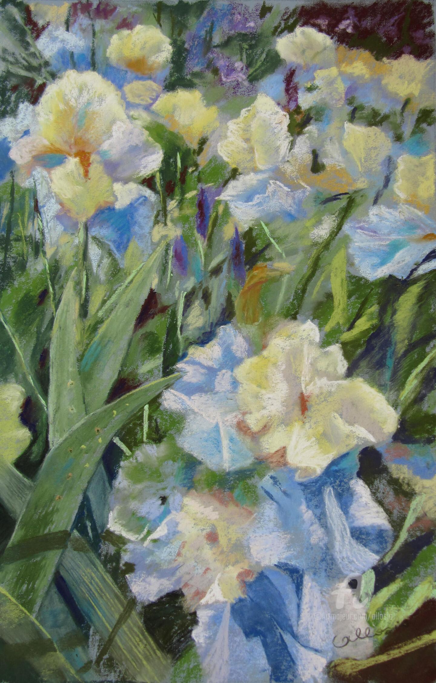 Claudette Allosio - Au milieu des iris