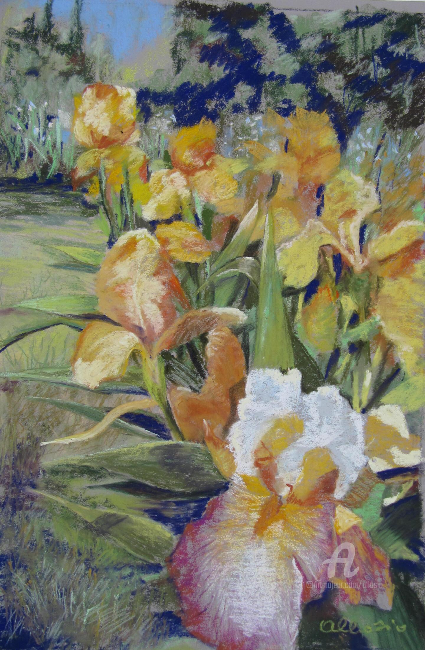 Claudette Allosio - Au jardin des iris