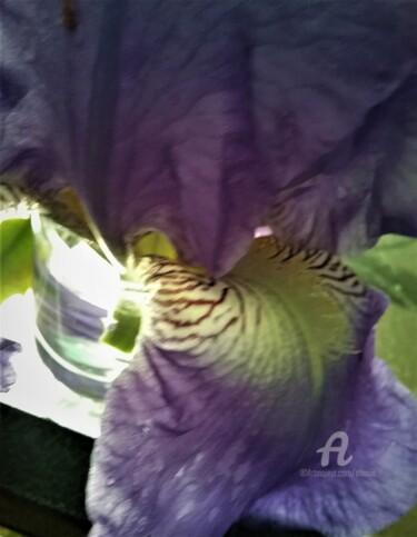 coeur-iris3.jpg