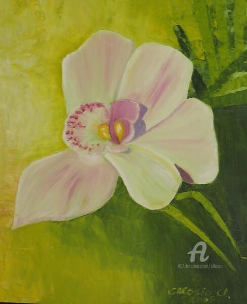 Claudette Allosio - l'orchidee