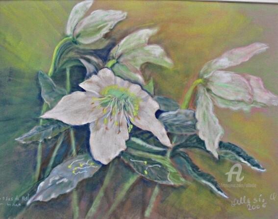 Claudette Allosio - roses de noel 2